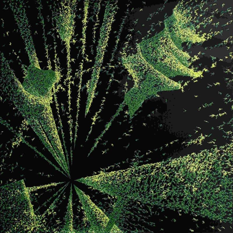carlo-moggia-rivelatori-2008