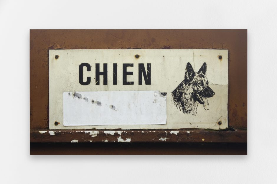 Claire Fontaine, Untitled (Chien) 2015 (2000x1335)