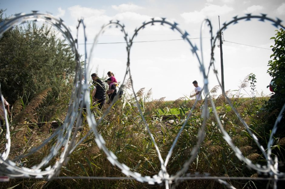 Migrants Stream Into Hungary As Fence Rises On Serbian Border