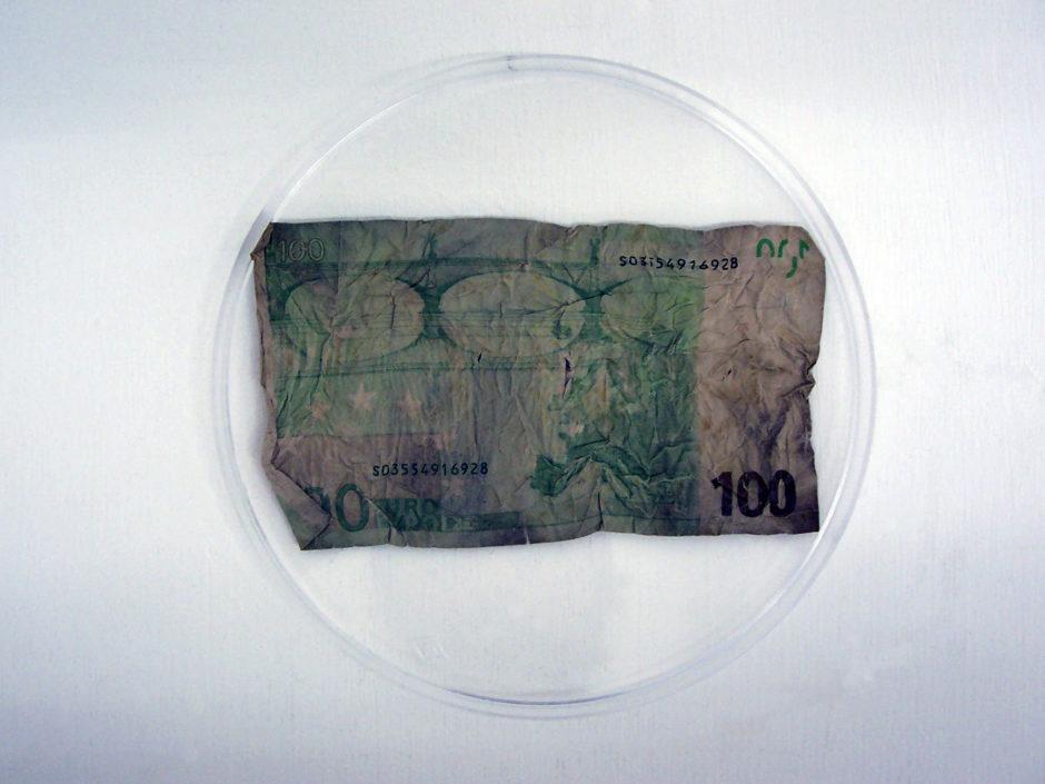 eating banconota 100