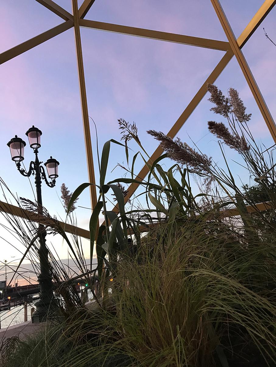 Architetto Di Giardini l'enigma del giardino: trucchi per la felicità – operaviva