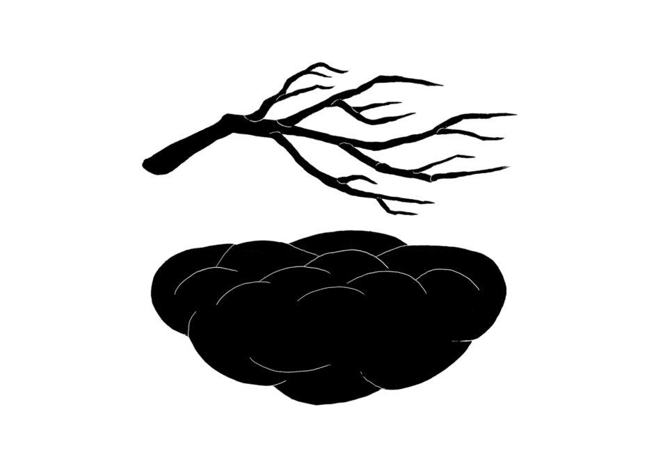 2_Andreco_nuvola e ramo_disegno 2015