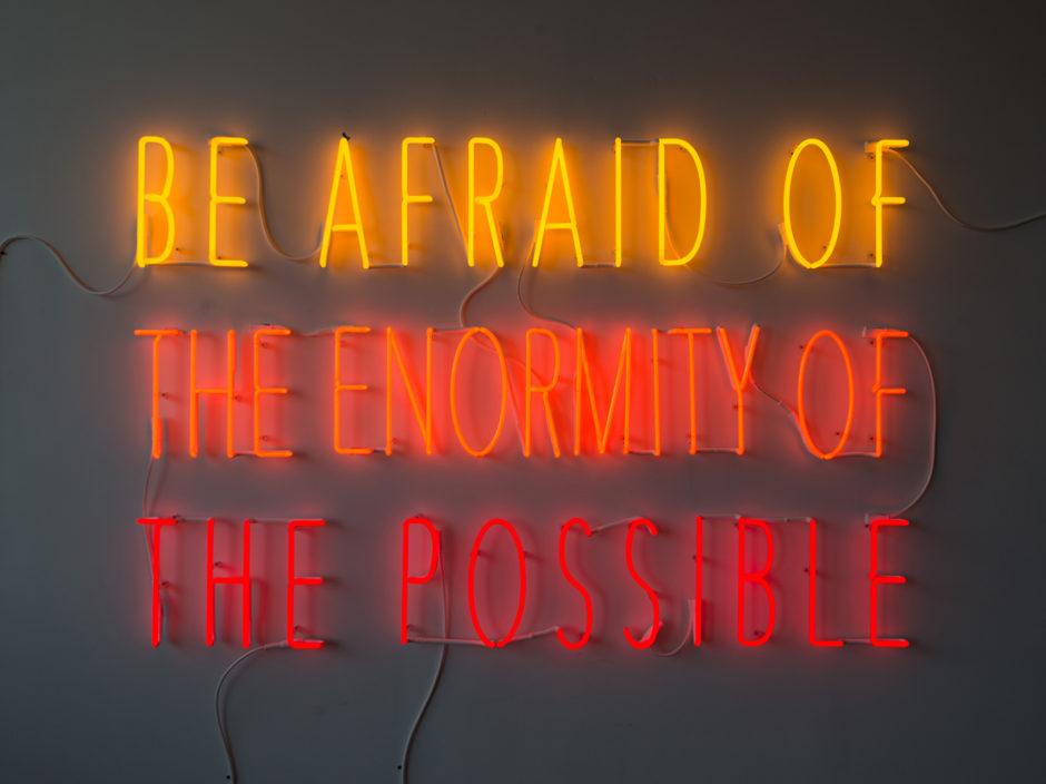 Alfredo Jaar Be Afraid of the Enormity of the Possible (2015)
