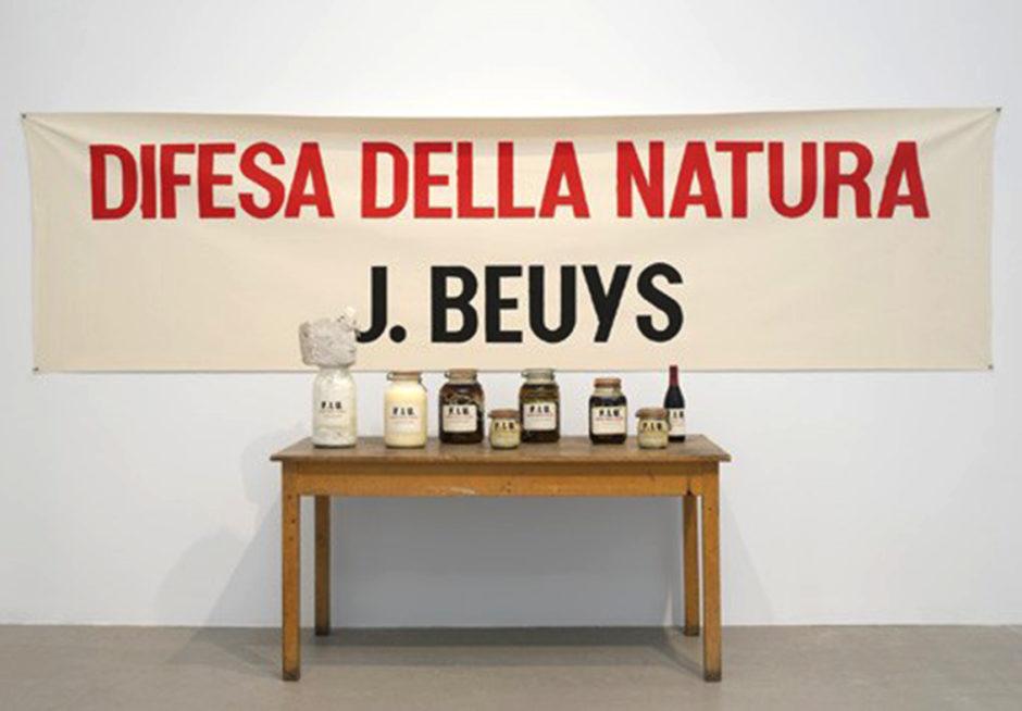 Joseph Beuys 1984. DIFESA DELLA NATURA