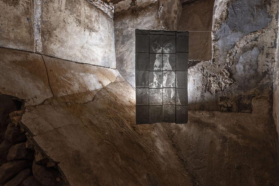 Marta Roberti, Licaone, disegno inciso su carta carbone. Installation view at Spazio Molini, Fondazione Pastificio Cerere. Crediti Giorgio Benni
